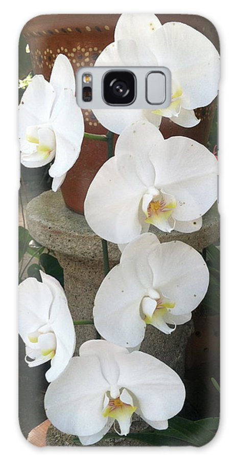 Flowers Galaxy S8 Case featuring the photograph Orchid Tower by William Hallett