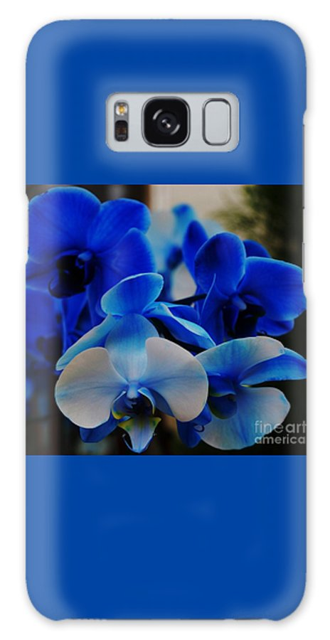 Orchid Photography Flower Photography Nature Photography Exotic Flora Photography Serenity Metal Frame Suggested Greeting Card Hannukah Card Canvas Print Poster Print Available On T Shirts Throw Pillows Tote Bags Duvet Covers Shower Curtains And Phone Cases Galaxy S8 Case featuring the photograph Orchids In Blue by Marcus Dagan