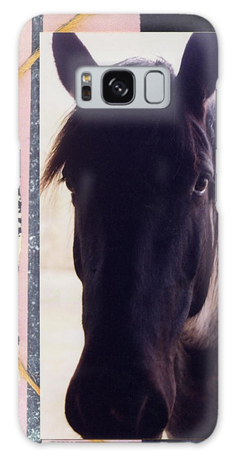Horse Galaxy S8 Case featuring the photograph Oreo by Mary Ann Leitch