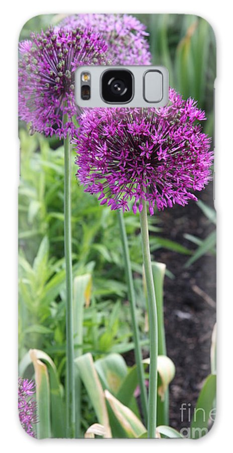 Flowers Galaxy S8 Case featuring the photograph Ornamental Leek Flower by Christiane Schulze Art And Photography