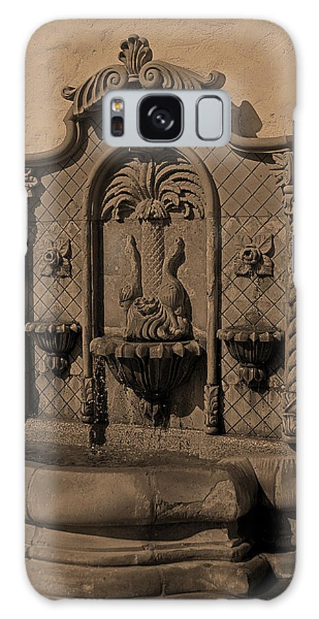 Ornate Wall Fountain Galaxy S8 Case featuring the photograph Ornate Wall Fountain by Viktor Savchenko
