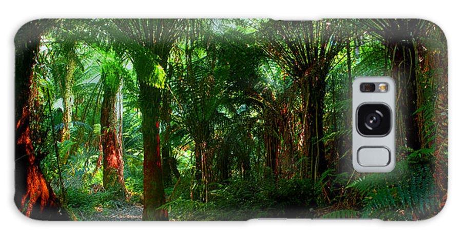 Otway Rainforest Galaxy S8 Case featuring the photograph Otway Rainforest by Saroj Gunasekara