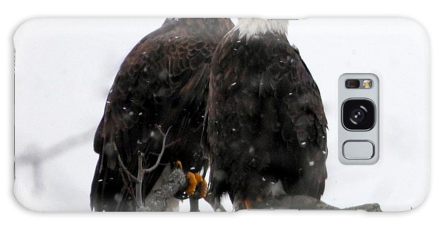Bald Eagles Galaxy Case featuring the photograph Our Time by Rennae Christman