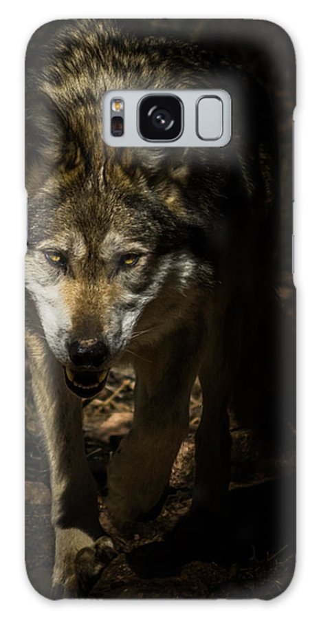 Wolf Galaxy Case featuring the photograph Out Of The Dark by Ernie Echols