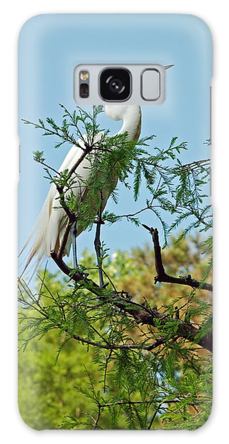 White Egret Galaxy Case featuring the photograph Out On A Limb by Suzanne Gaff