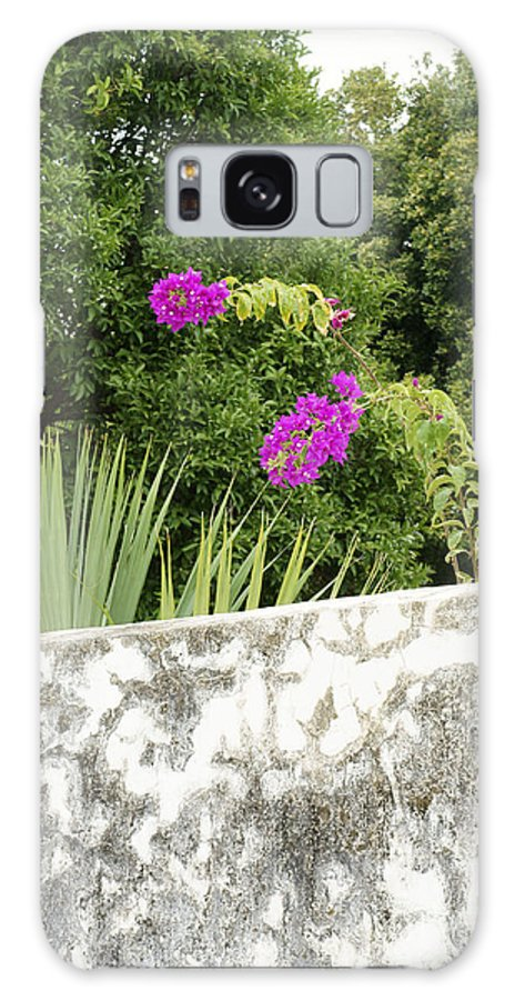 Mexico Galaxy S8 Case featuring the photograph Overhanging Blossoms Yaxcopoil Mexico by John Mitchell