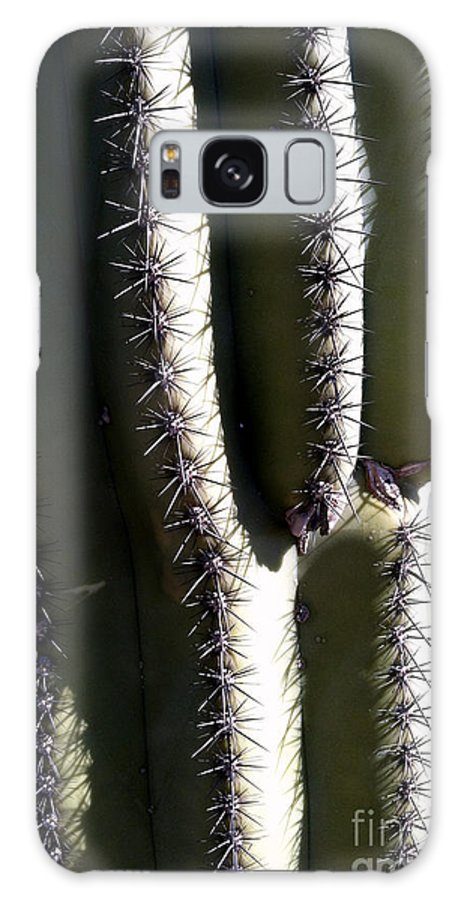 Cacti Galaxy S8 Case featuring the photograph Owie 10 by Marlene Burns