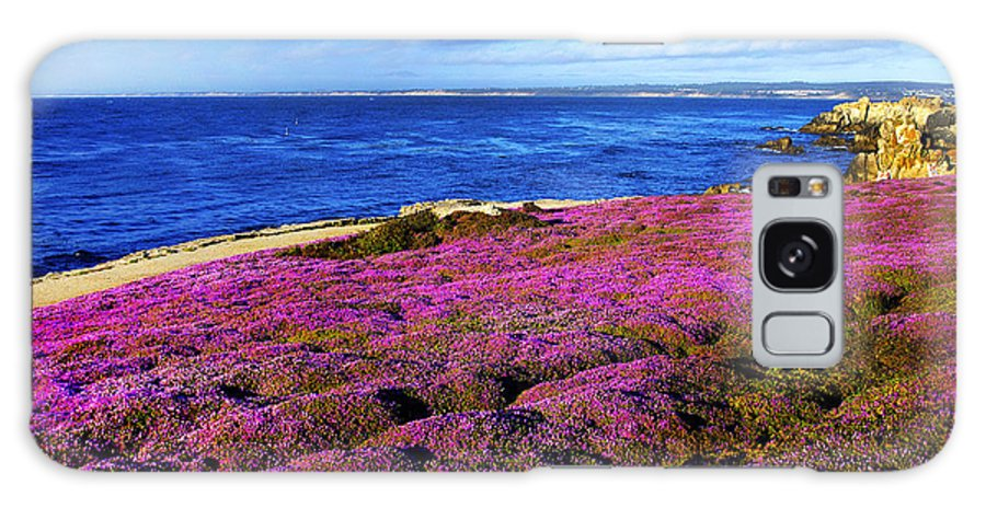 Flowers Galaxy S8 Case featuring the photograph Pacific Grove California Coast by Howard Koby