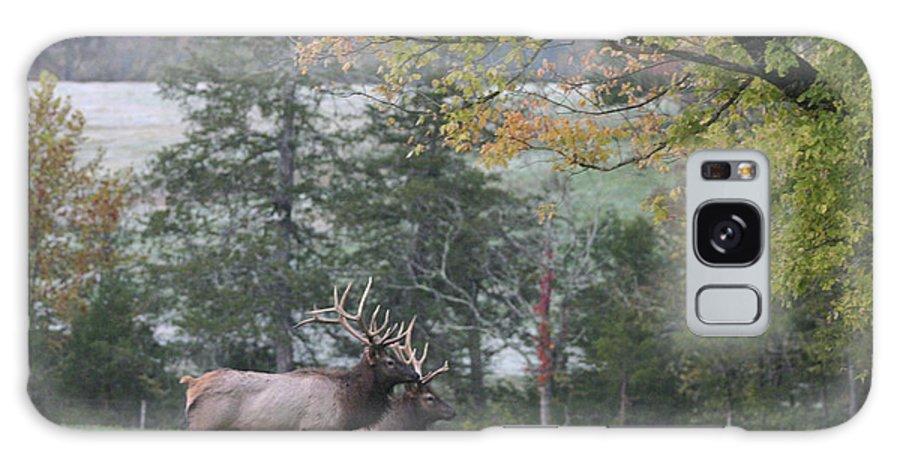 Bull Elk Galaxy S8 Case featuring the photograph Pair Of Elk Bulls by Robert Camp