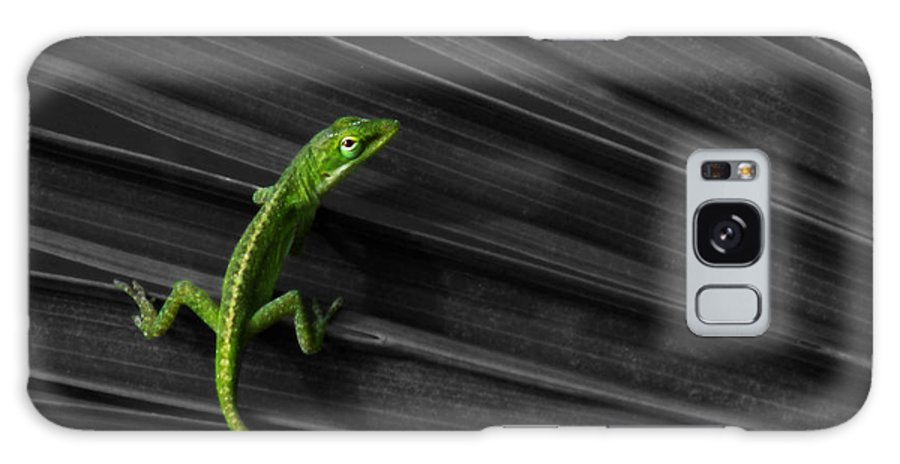Anole Galaxy S8 Case featuring the photograph Palm Leaf Lizard by Deborah Smith
