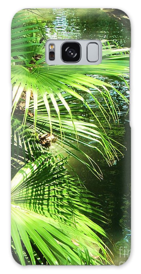 Palm Tree Galaxy S8 Case featuring the photograph Palm Tree 8 by Esther Rowden