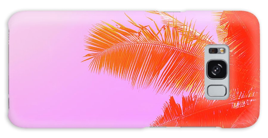 Orange Color Galaxy Case featuring the photograph Palm Tree On Sky Background. Palm Leaf by Slavadubrovin