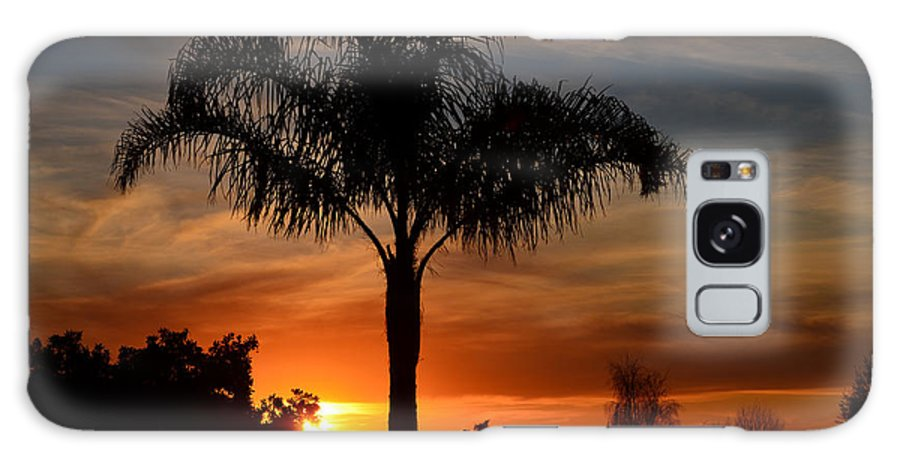 Hdr Galaxy S8 Case featuring the photograph Palm Tree Sunset by Mathias