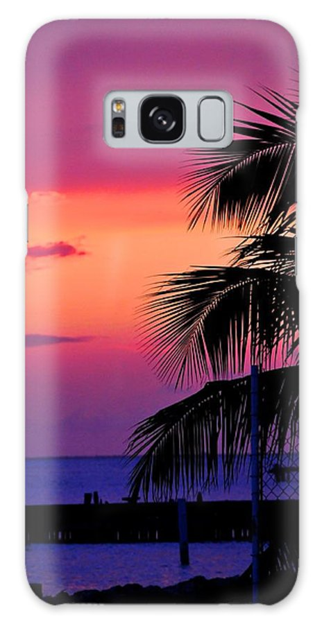 Sunset Galaxy S8 Case featuring the photograph Palmtree At Sunset by Tony Garcia