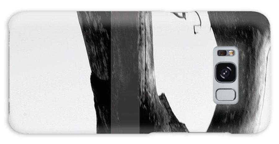 Jamie Lynn Gabrich Galaxy S8 Case featuring the photograph Parish by Jamie Lynn