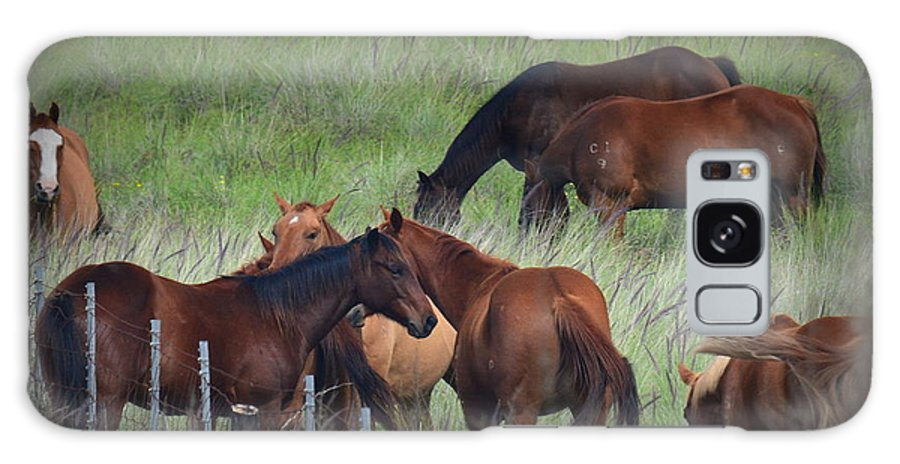 Horse Galaxy S8 Case featuring the photograph Parker Ranch Horses by Lori Seaman