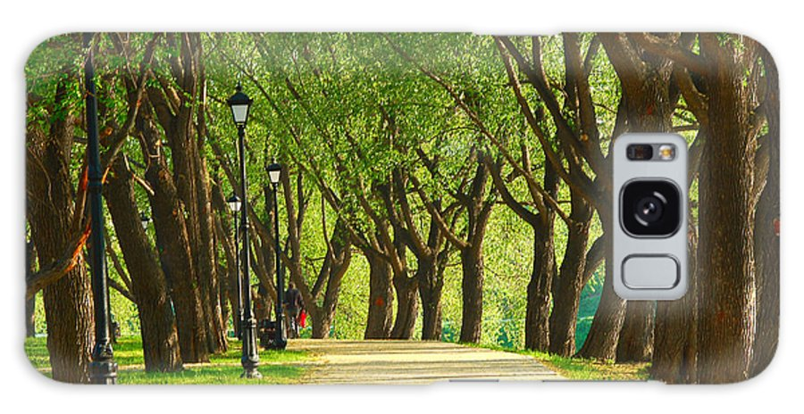 Parkway Galaxy S8 Case featuring the photograph Parkway Among Trees by Eduard Isakov