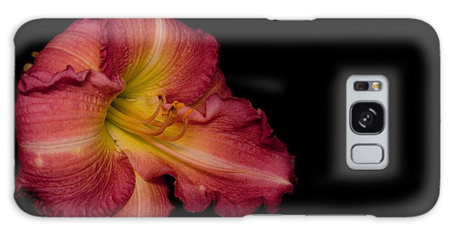 Passionate Galaxy S8 Case featuring the photograph Passionate Lily 20 by Douglas Barnett