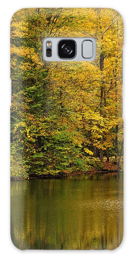 Baldwinsville Galaxy S8 Case featuring the photograph Peaceful Pond by Don Dennis