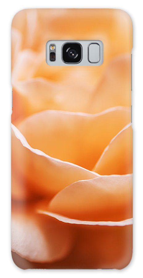 Rose Galaxy S8 Case featuring the photograph Peach Rose by Vishwanath Bhat