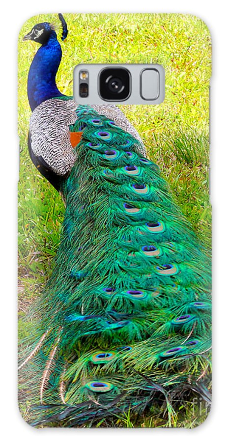 Peacock Galaxy S8 Case featuring the photograph Peacock by Carey Chen