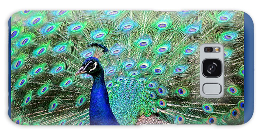 Peacock Galaxy S8 Case featuring the pyrography Peacock Delight by DUG Harpster