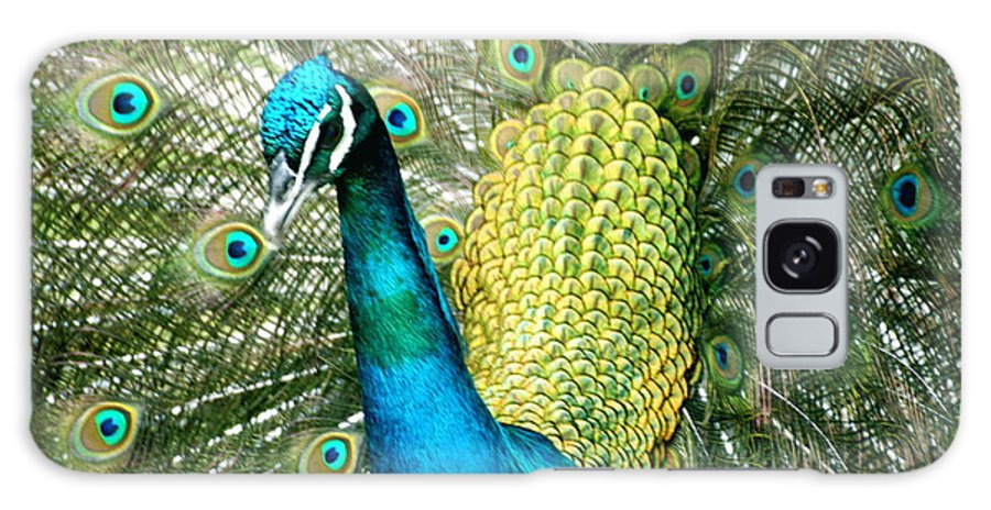 Peacock Galaxy S8 Case featuring the photograph Peacock Feathers by John Colley