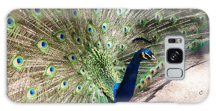 Bird Galaxy S8 Case featuring the photograph Peacock Show by Ernie Echols