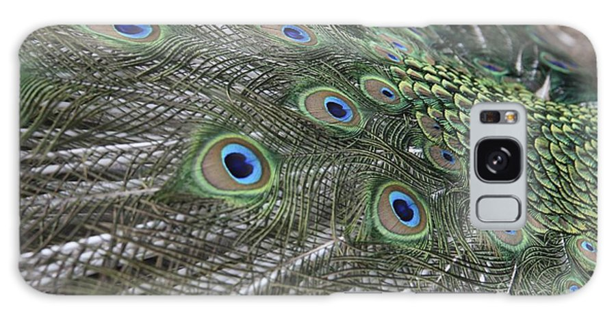 Peacock Galaxy S8 Case featuring the photograph Peacock's Feathers by Sean Rathbun
