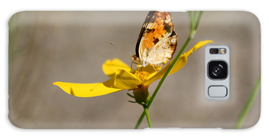 Butterfly Galaxy S8 Case featuring the photograph Pearl Crescent Butterfly On Coreopsis by Karen Adams