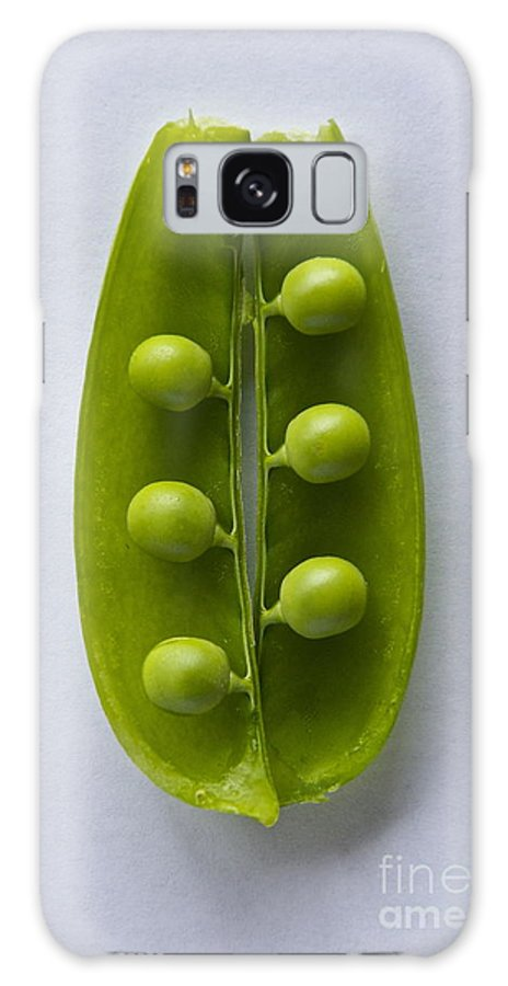 Photography Galaxy S8 Case featuring the photograph Peas In A Pod 2 by Sean Griffin