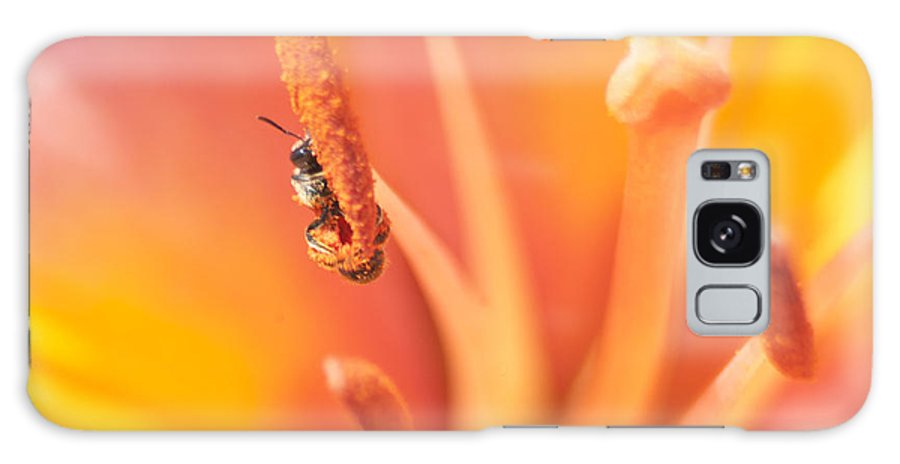 Bee Galaxy S8 Case featuring the photograph Peeking 'round The Lily Pistil by Kathryn Whitaker
