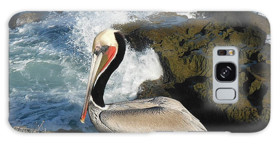 Pelican Galaxy S8 Case featuring the photograph Pelican by April Antonia
