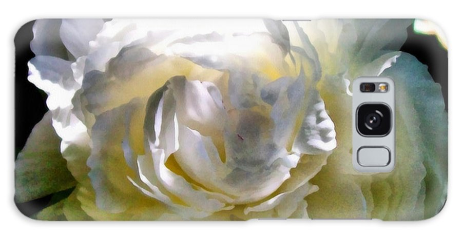 White Peony Galaxy S8 Case featuring the photograph Peony In Morning Sun by Michelle Calkins