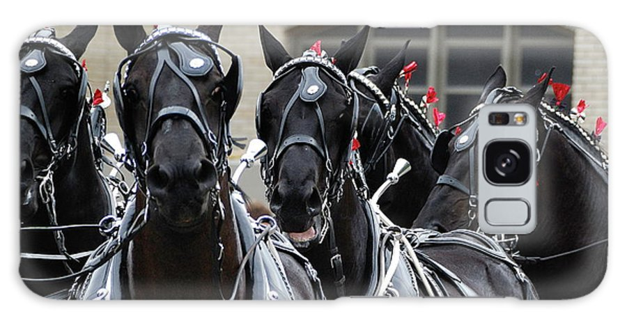 Horse Galaxy S8 Case featuring the photograph Percheron Horse Team 2008 by Joseph Duba