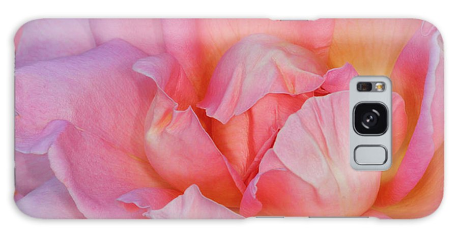 Rose Galaxy S8 Case featuring the photograph Petals by Dave Mills