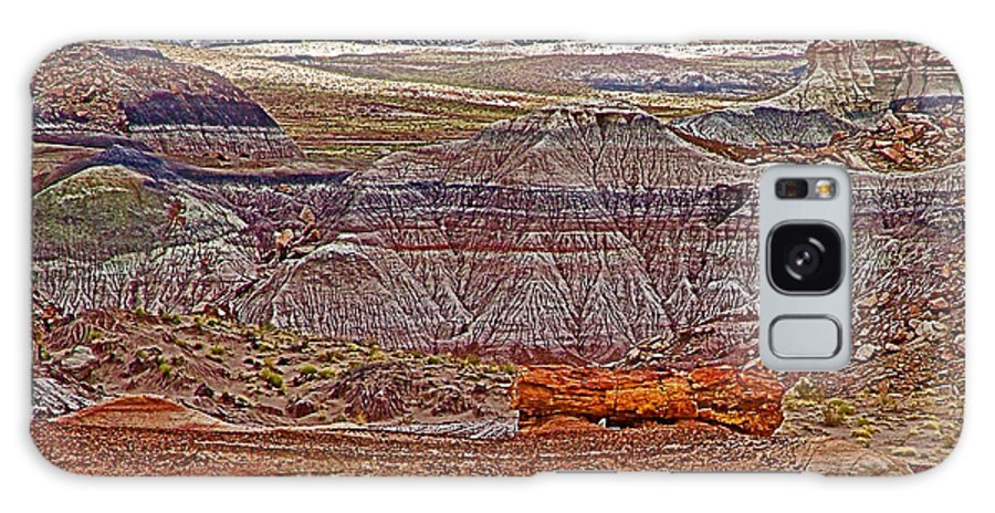 Petrified Log On Overlook Near Blue Mesa In Petrified Forest National Park Galaxy S8 Case featuring the photograph Petrified Log On Overlook Near Blue Mesa In Petrified Forest National Park-arizona  by Ruth Hager