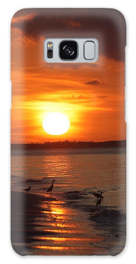 Sanibel Island Galaxy S8 Case featuring the photograph Photo Four by Aimee Vance
