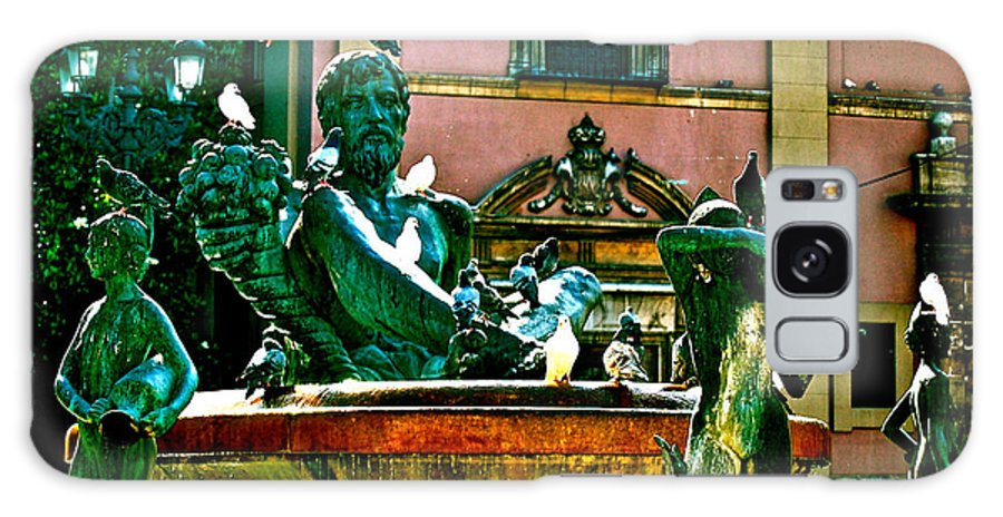 Fountain Statues Galaxy S8 Case featuring the photograph Pigeon's Delight by HweeYen Ong
