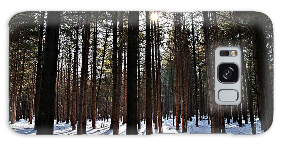 Pine Galaxy S8 Case featuring the photograph Pine Grove Vii by Joe Faherty
