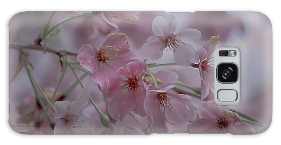 Pink Galaxy S8 Case featuring the photograph Pink Blossoms by Scott Hervieux