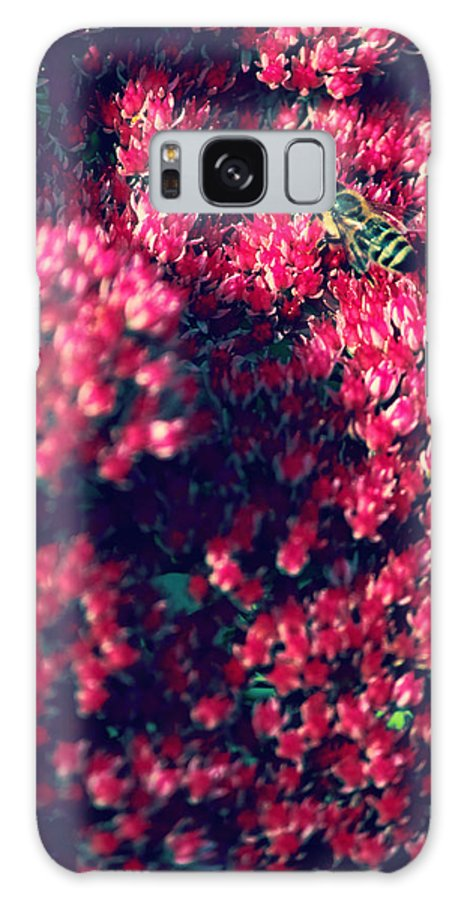 Pink Flowers Galaxy S8 Case featuring the photograph Pink Bumblebee by Danielle Mattson