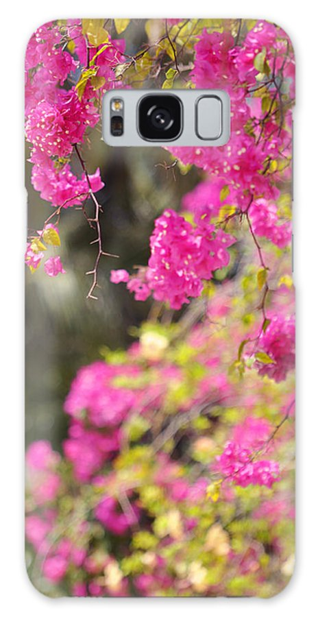 Bougainvillea Galaxy S8 Case featuring the photograph Pink Cascade Of Bougainvillea. Vertical by Jenny Rainbow