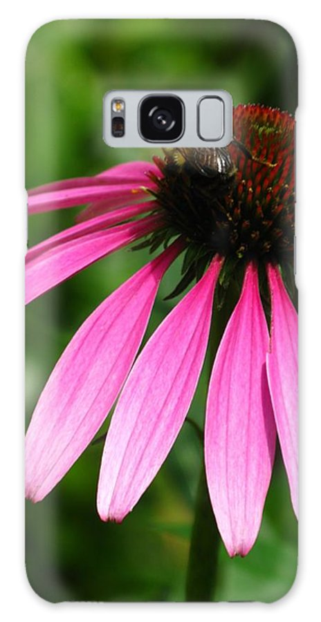 Pink Galaxy S8 Case featuring the photograph Pink Cone Flower by Laura Corebello