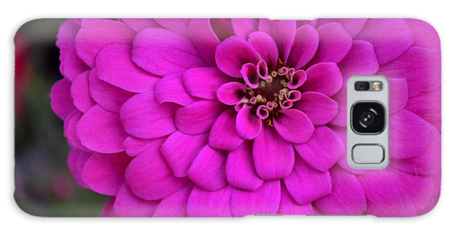 Flower Galaxy S8 Case featuring the photograph Pink Flower Blossoming by Richelle Munzon