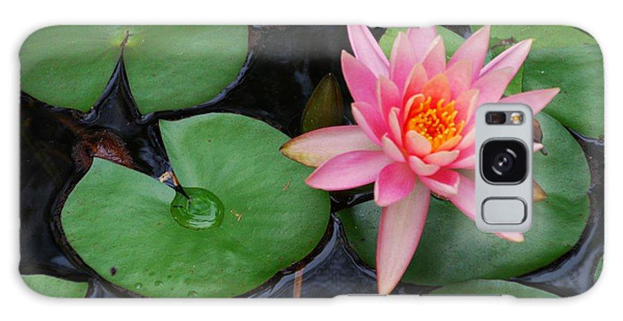 Ankya Klay Galaxy S8 Case featuring the photograph Pink Lotus Love by Ankya Klay