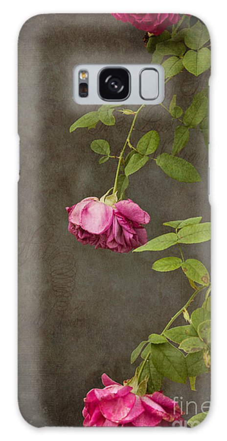 Rose Galaxy Case featuring the photograph Pink On Gray by K Hines
