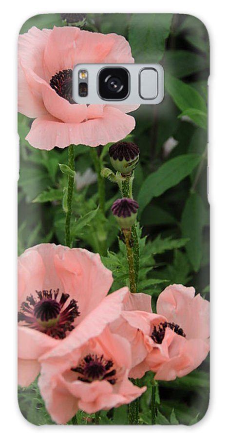 Pink Galaxy S8 Case featuring the photograph Pink On The Bridge Of Flowers by Brian Hoover