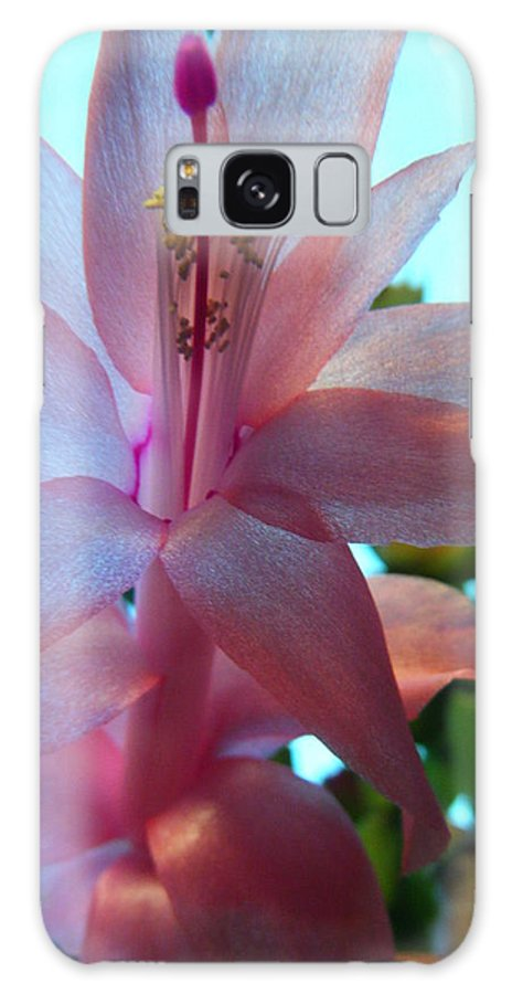 Flower Galaxy S8 Case featuring the photograph Pink Pollination by Jasmyne McDonald