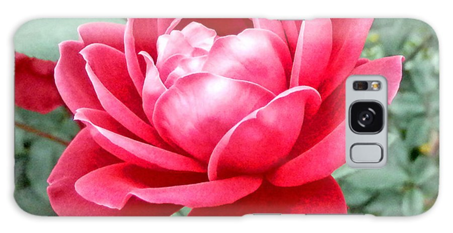 Duane Mccullough Galaxy S8 Case featuring the photograph Pink Rose by Duane McCullough